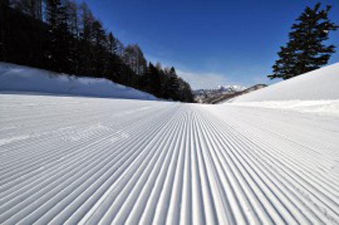 群馬スキー場 パウダースノー