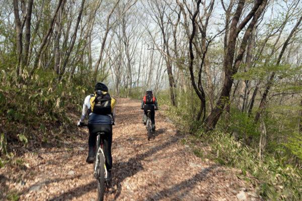 マウンテンバイクで山中を駆け抜ける 東吾妻MTB 榛名山 マウンテンバイク