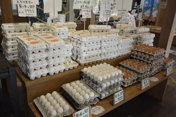 高崎市 たまご市場 卵太郎 たまごマニア