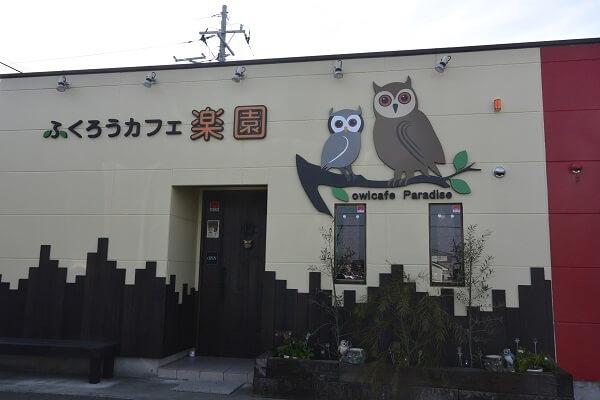 高崎市 ふくろうカフェ楽園