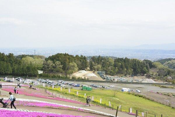 みさと芝桜公園 眺望