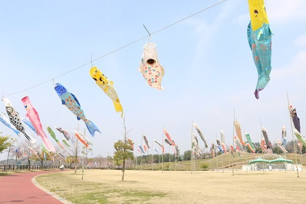おおた芝桜まつり 八王子山公園 北部運動公園 こいのぼり 太田市