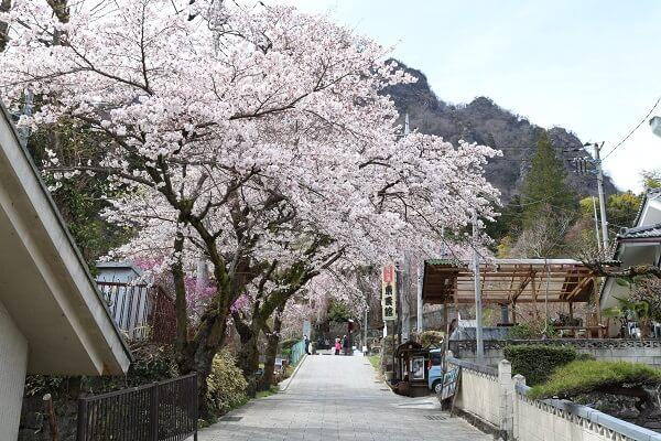 妙義神社 富岡市