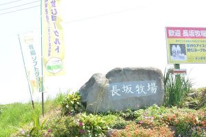長坂牧場看板オブジェ 鼻高展望花の丘 高崎市 コスモス祭り