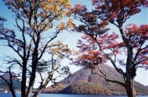紅葉の間から見える榛名山 紅葉スポット おすすめ 群馬