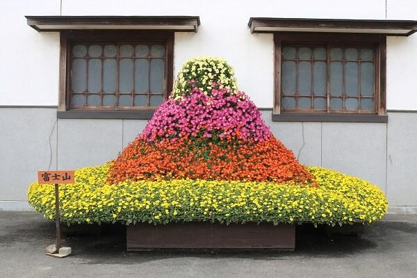 関東菊花大会 ながめ公園 みどり市