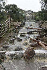 アメリカゾーンの大きな滝と川 群馬サファリパーク