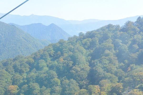 谷川岳ロープウェイ 見どころ