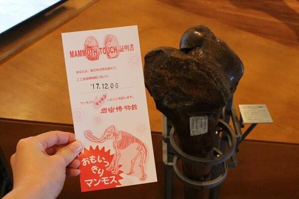 岩宿博物館 岩宿時代 みどり市