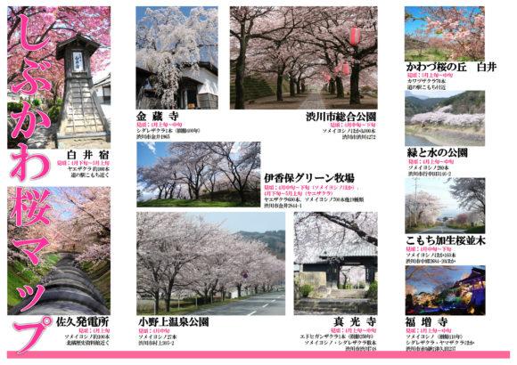 しぶかわ桜マップ1