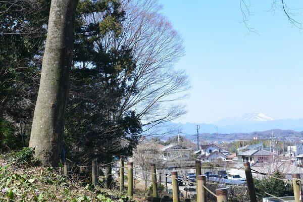 小串カタクリの里 浅間山