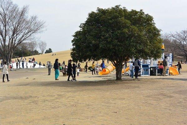 いせさき市民のもり公園 遊具