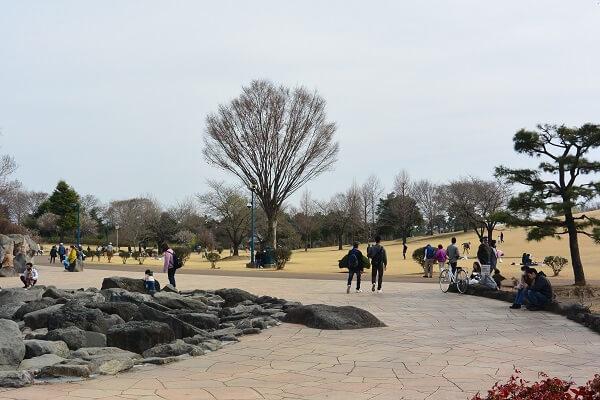 いせさき市民のもり公園 やすらぎの苑