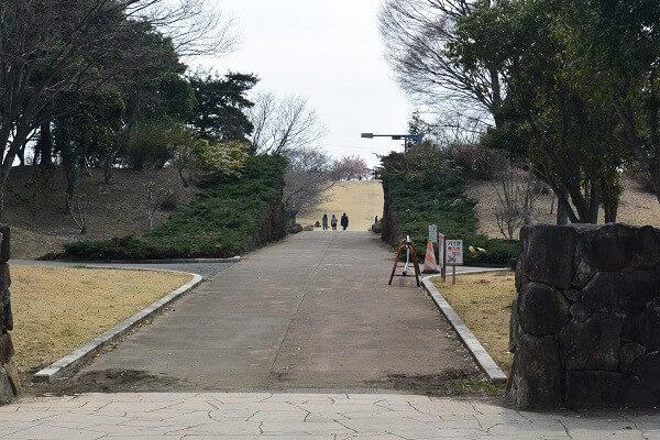 いせさき市民のもり公園 公園