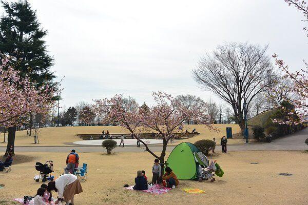 いせさき市民のもり公園 創の広場