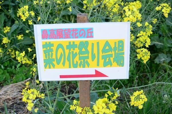 鼻高展望花の丘 菜の花祭り