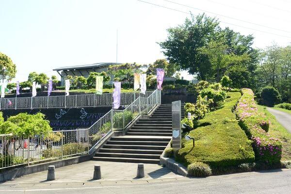 ふじの咲く丘 入口