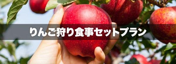 りんご狩り食事セットプラン 原田農園 味覚狩り 沼田市