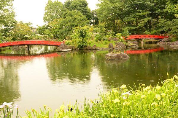 浜川運動公園 御布呂が池
