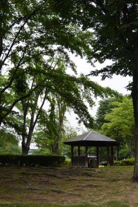 浜川運動公園 高崎市