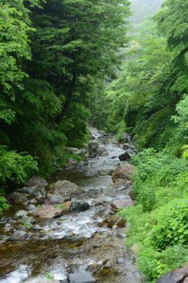 清流荘 清流川