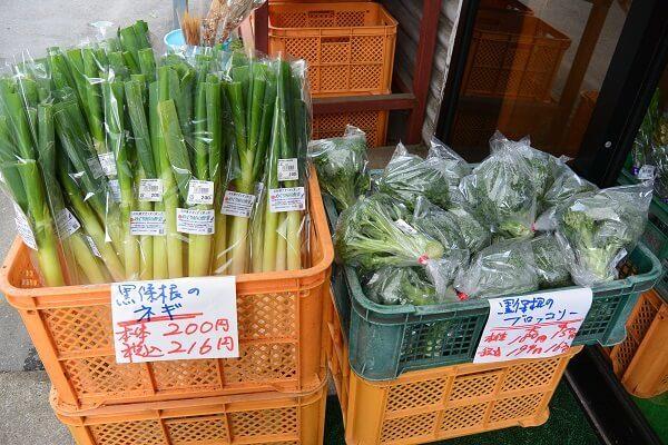 道の駅くろほねやまびこ 野菜