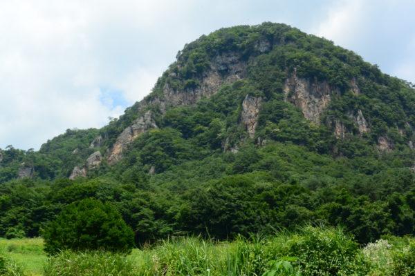 見渡す限り緑に囲まれたスポット ヒマワリ畑 大岩フラワーガーデン