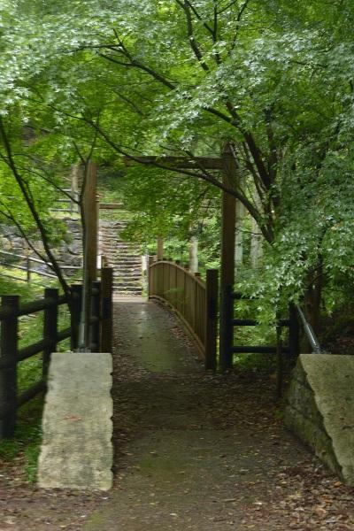 蝉の渓谷 吊橋