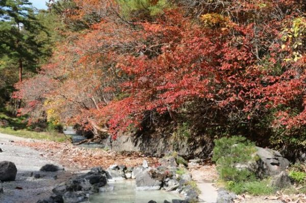 西の河原公園 草津温泉 紅葉スポット おすすめ 群馬