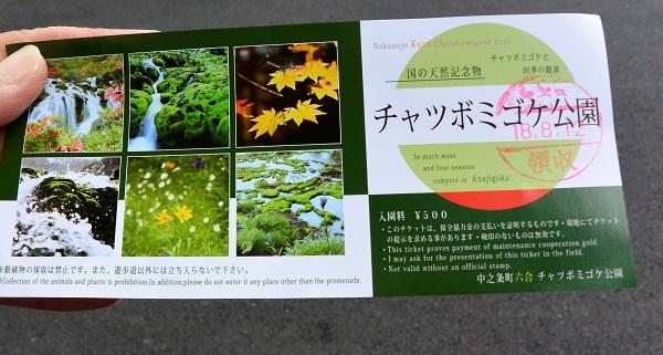 入園チケット チャツボミゴケ公園 紅葉 苔