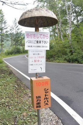 公園内のバス停 チャツボミゴケ公園 紅葉 苔