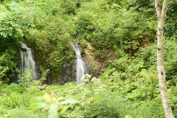途中にある滝 チャツボミゴケ公園 紅葉 苔