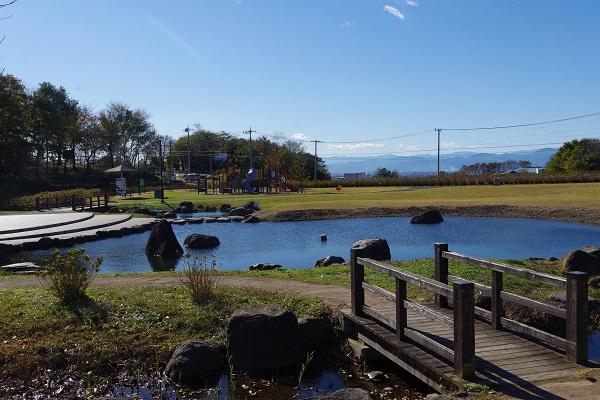荻窪公園 赤城の恵