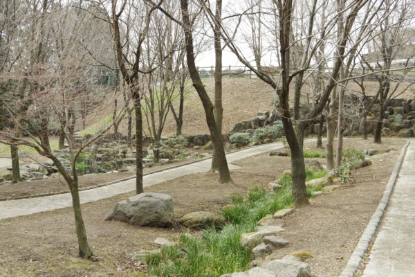 サクラソウふれあい公園 公園
