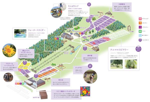 園内マップ たんばらラベンダーパーク 沼田市 ラベンダー