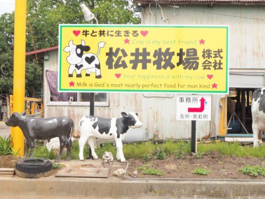 松井牧場 ミルクアイス 太田市大原町