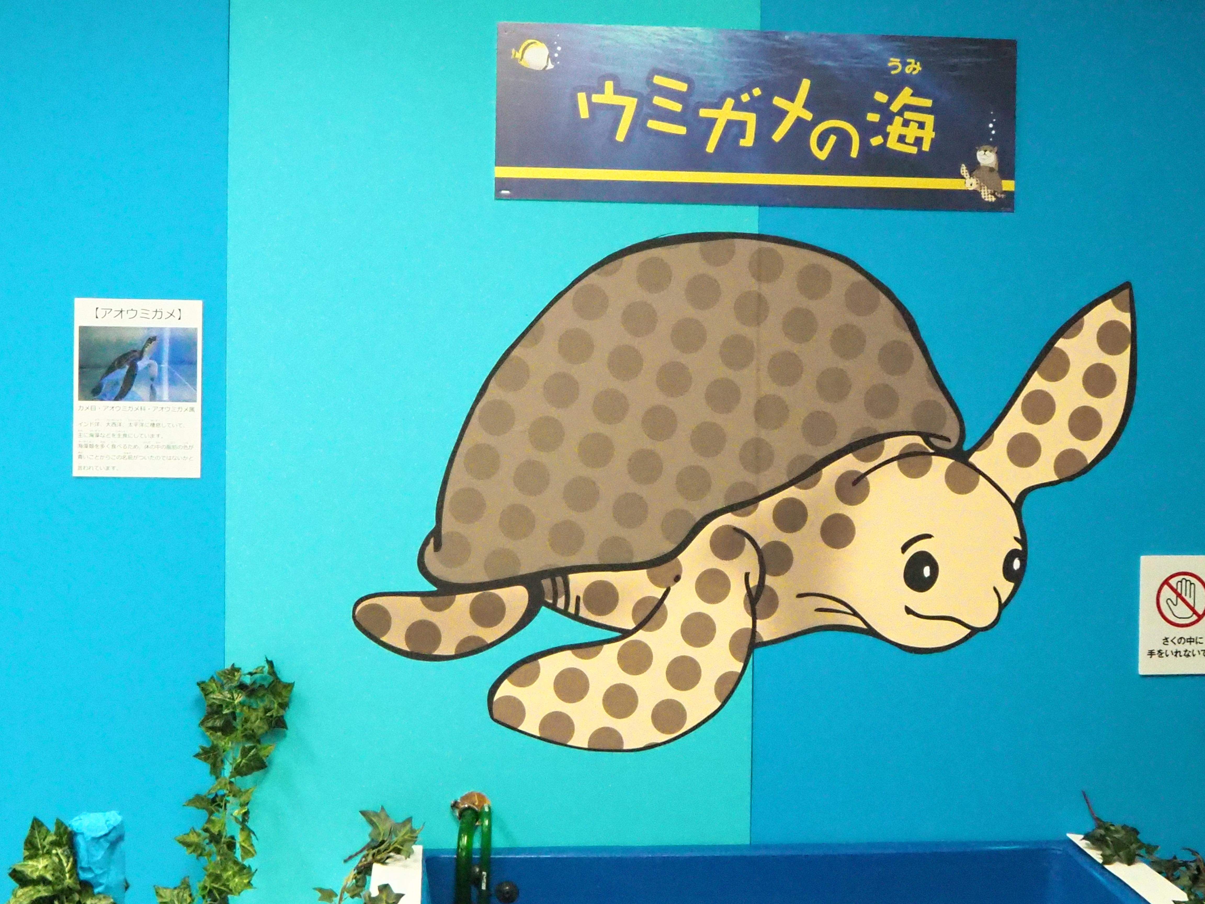 ウミガメ 絵