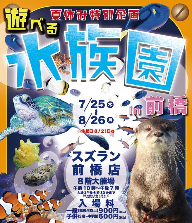 遊べる水族館 フライヤー