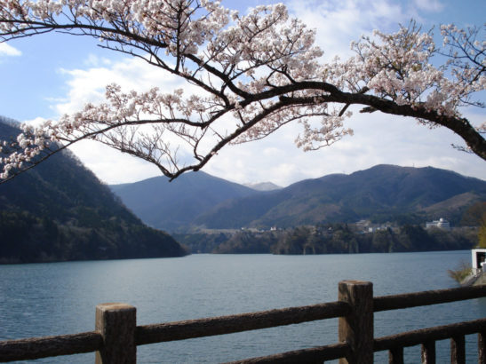 赤谷湖花火大会 猿ヶ京温泉