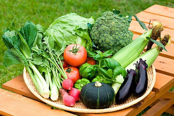 野菜 盛り