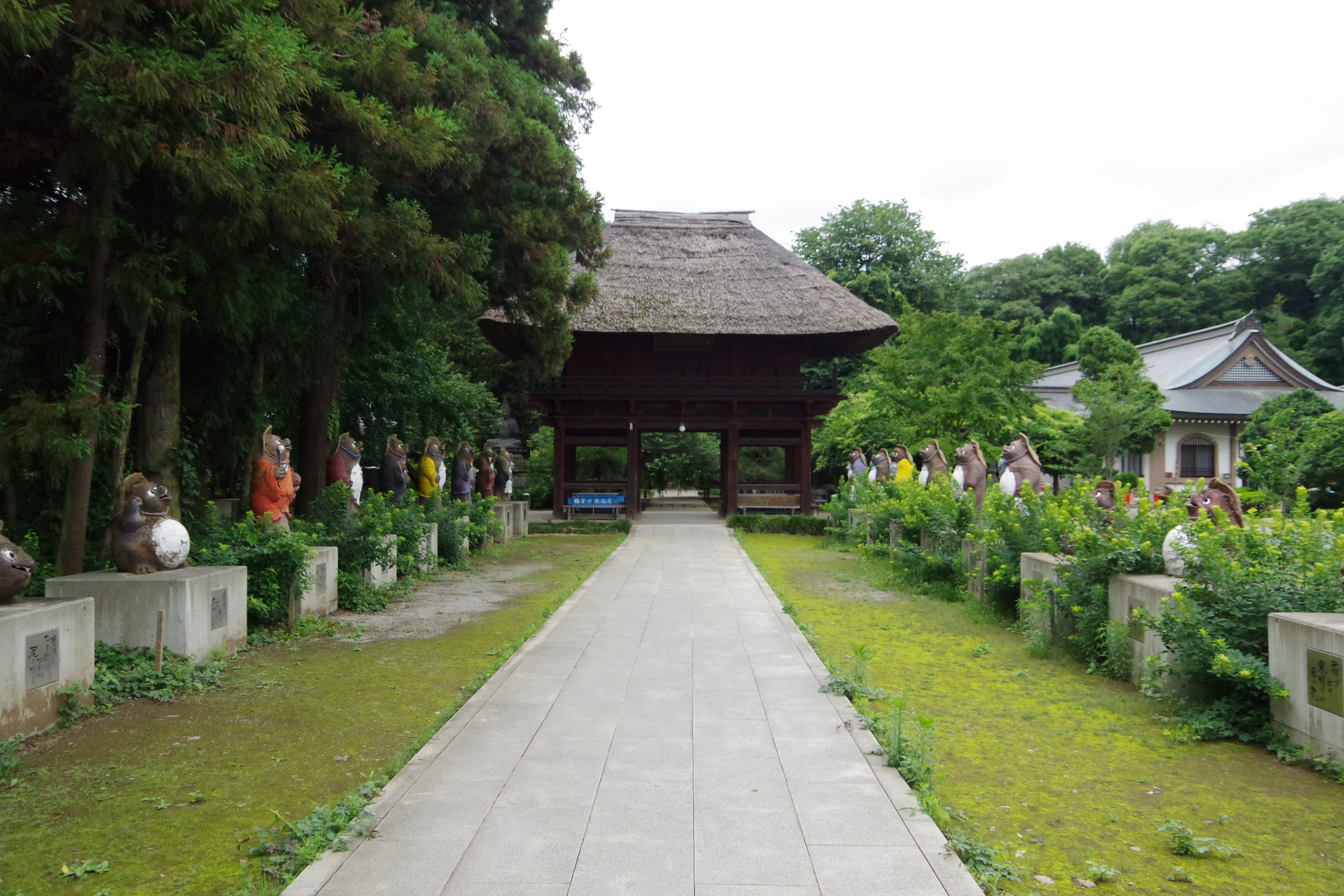 茂林寺 参道