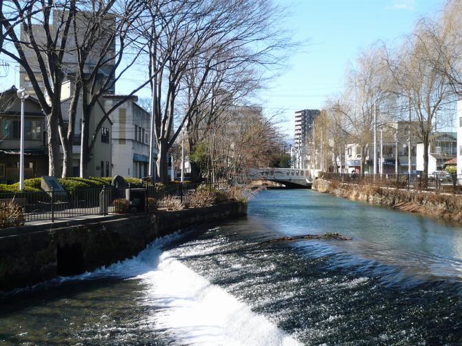 10㎞コース 敷島公園
