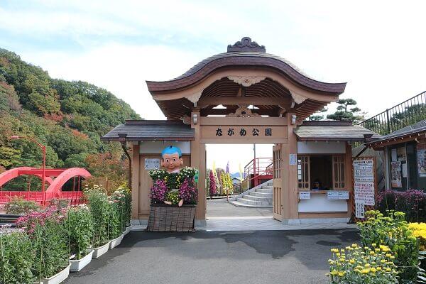 群馬 関東菊花大会