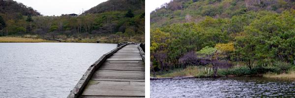 県立赤城公園ハイキングコース風景