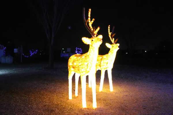 いせさきイルミネーション2016の様子2 群馬 クリスマス いせさきイルミネーション