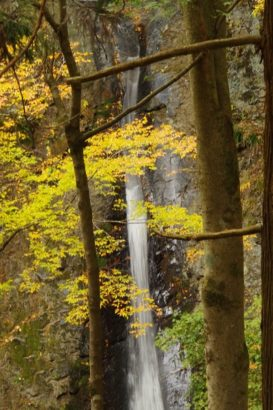 パワースポット 線ヶ滝