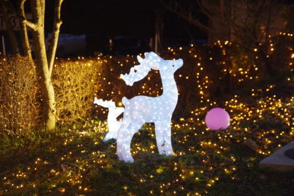 かんなウィンターイルミネーション クリスマス