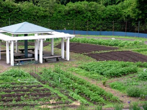 相間川温泉 農場
