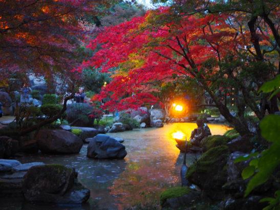徳明園 回遊式日本庭園
