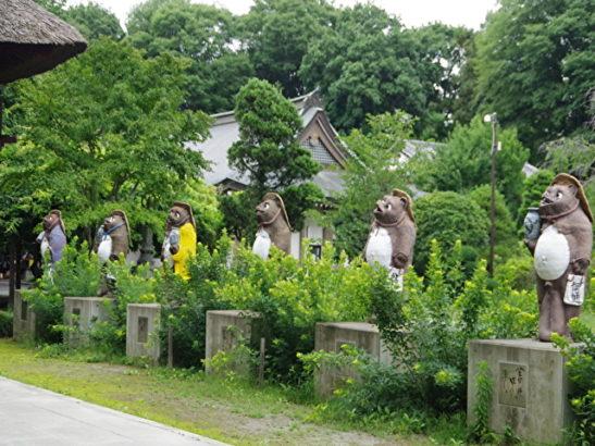 つつじが岡公園 イルミネーション・ライトアップ 茂林寺